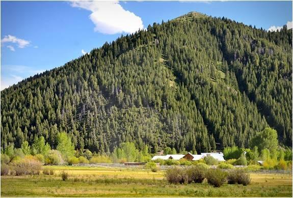 2833_1405001023_rancho-pioneer-12.jpg - - Imagem - 8