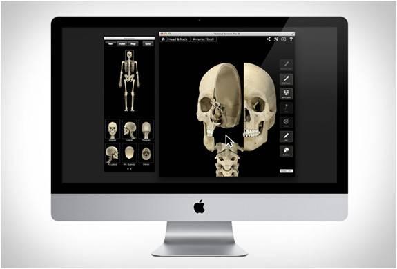 3658_1406318764_app-sistema-esqueleto-7.jpg - - Imagem - 7