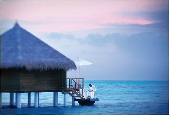 3692_1407355954_resort-taj-exotica-maldivas-8.jpg - - Imagem - 8