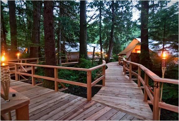 4342_1429080446_clayoquot-wilderness-resort-11.jpg - - Imagem - 11