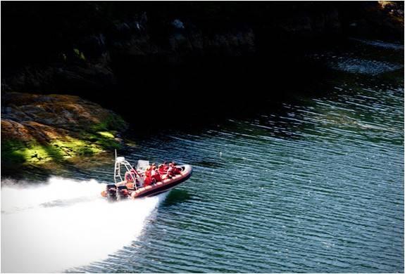 4342_1429080622_clayoquot-wilderness-resort-23.jpg - - Imagem - 23