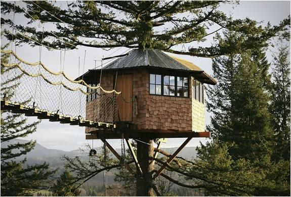 4487_1433965979_cinder-cone-treehouse-7.jpg - - Imagem - 7