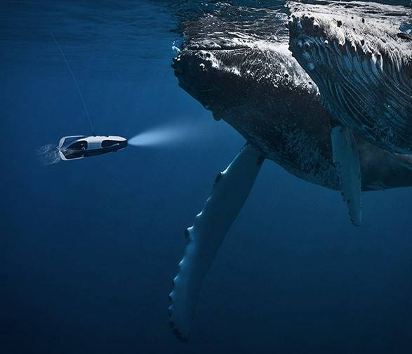 5519_1489693864_powerray-fishfinder-6.jpg - - Imagem - 6