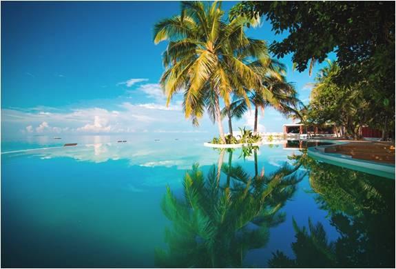 RESORT DE LUXO NAS MALDIVAS - AMILLA FUSHI RESORT - Imagem - 5