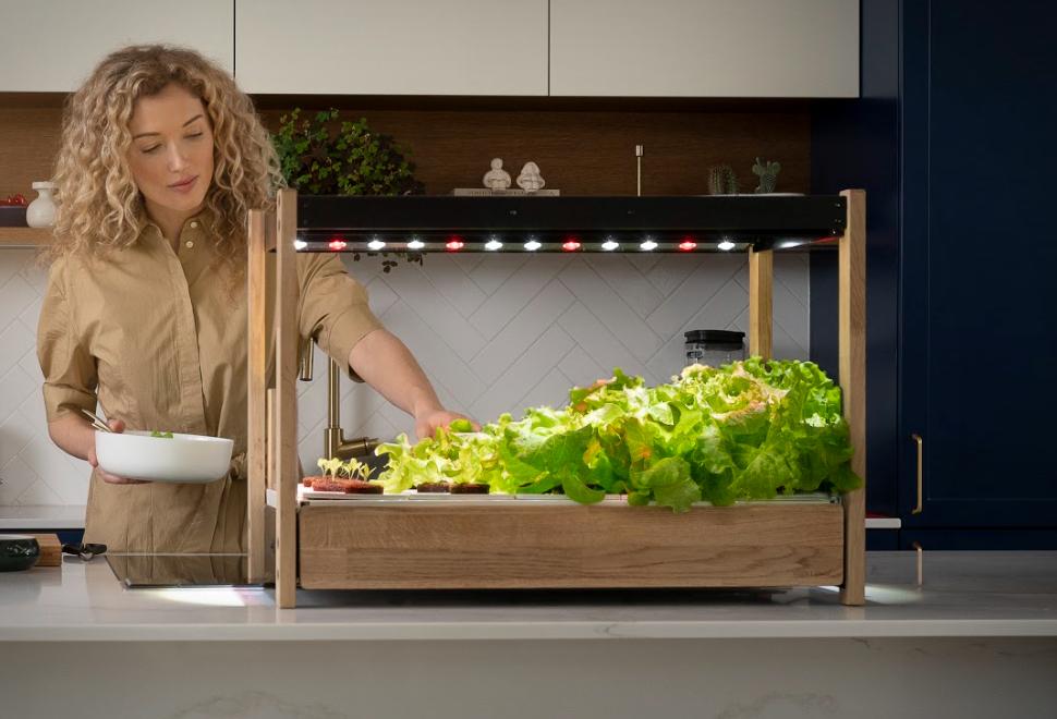 Como fazer uma horta em casa - CLICK & GROW 25 - Imagem - 1
