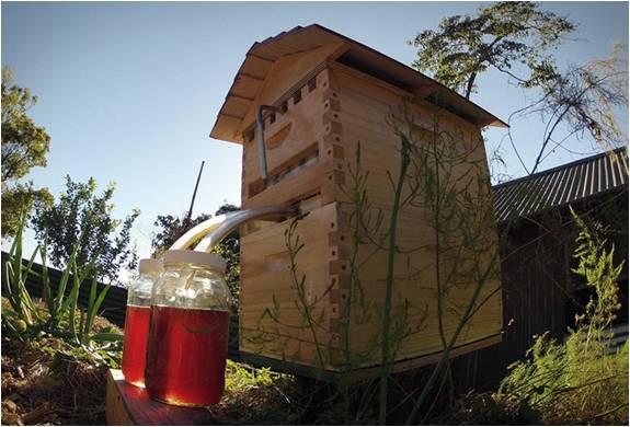 Colmeia - Flow Hive - Imagem - 3