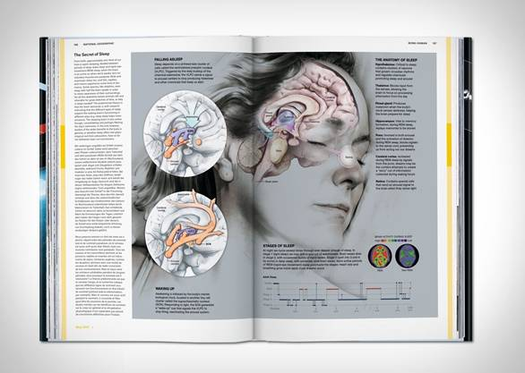 Revista National Geographic Infographics - Imagem - 4