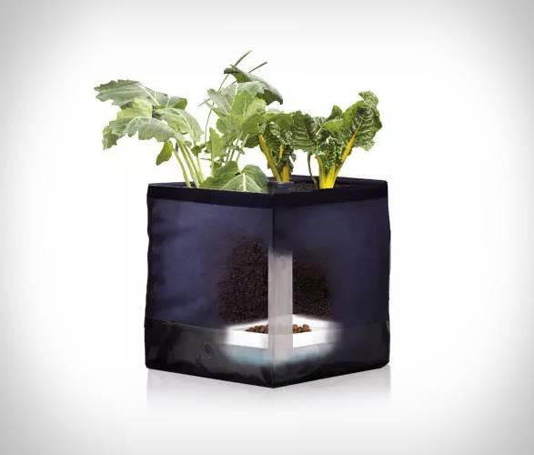 Kit Agricultura Urbana Growkit | Noocity - Imagem - 2