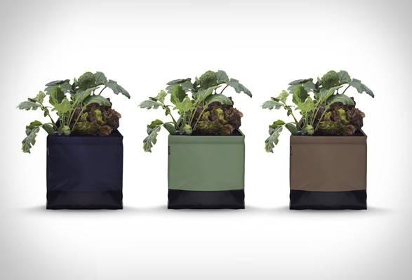 Kit Agricultura Urbana Growkit | Noocity - Imagem - 5