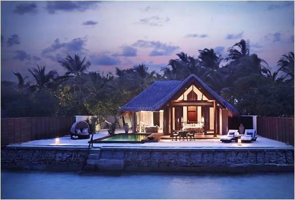 TAJ EXOTICA RESORT - MALDIVAS - Imagem - 2