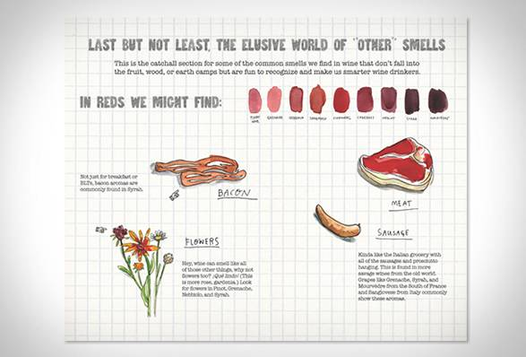 Livro Risco & Guia em Vinhos | Scratch & Sniff Wine Guide - Imagem - 3