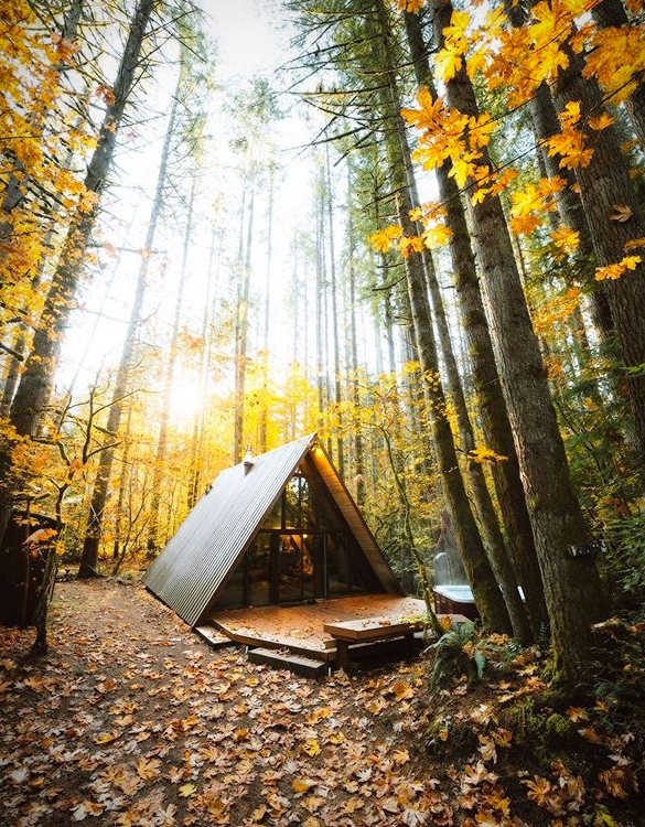 sky-haus-aframe-cabin-airbnb-7.jpg - - Imagem - 7