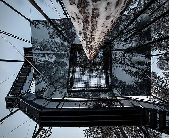 Arquitetura - Casa na Árvore - O Sétimo Quarto - Imagem - 4