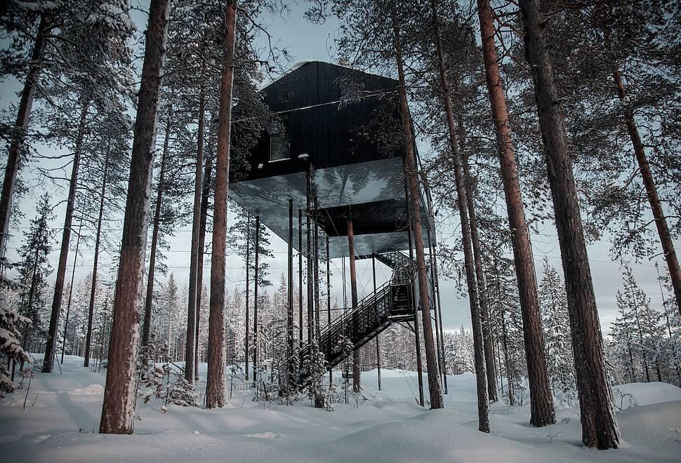 Arquitetura - Casa na Árvore - O Sétimo Quarto
