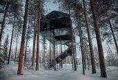 thum_the-7th-room-treehouse.jpg