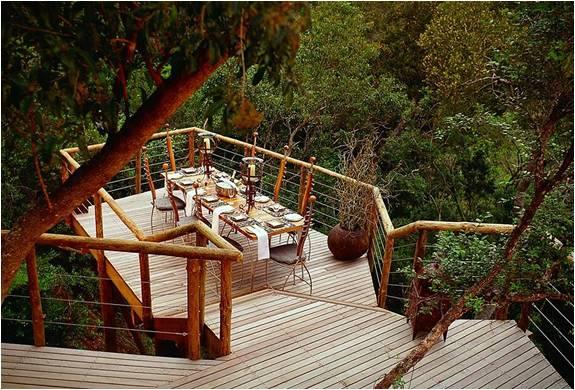 RESORT DE LUXO NA ÁFRICA DO SUL - TSALA TREETOP LODGE - Imagem - 2