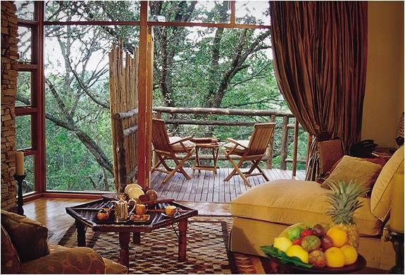 RESORT DE LUXO NA ÁFRICA DO SUL - TSALA TREETOP LODGE - Imagem - 4
