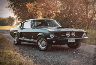 Shelby Mustang GT350 - 1967