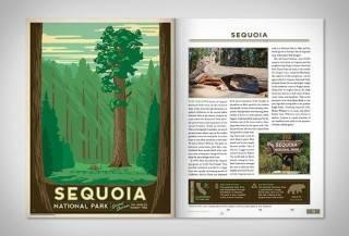 59 Parques Americanos Ilustrados - Imagem - 2