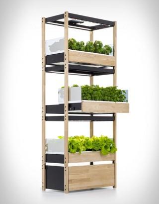 Como fazer uma horta em casa - CLICK & GROW 25 - Imagem - 3