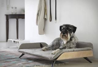 Cama para Cão | Letto