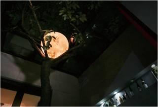 Lanterna Lunar - Imagem - 2
