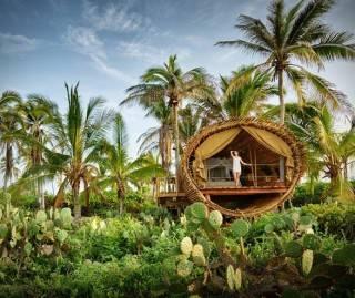 Resort Casa na Árvore Playa Viva - Imagem - 2