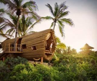 Resort Casa na Árvore Playa Viva - Imagem - 3