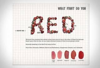 Livro Risco & Guia em Vinhos | Scratch & Sniff Wine Guide - Imagem - 2