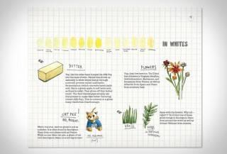 Livro Risco & Guia em Vinhos | Scratch & Sniff Wine Guide - Imagem - 5