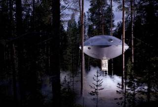 Hotel UFO   Treehotel - Imagem - 2