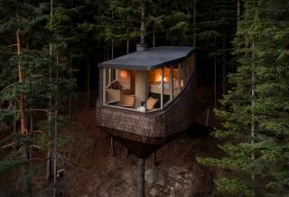 Casa na Árvore em forma de pinha - WOODNEST