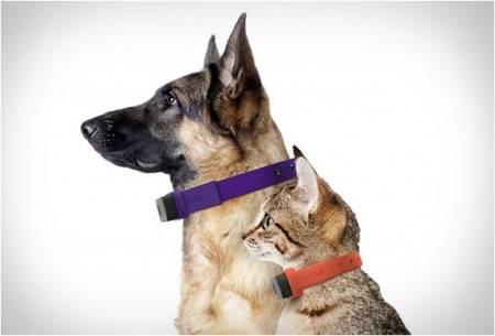 Coleira GPS | GPS Collar Nuzzle | Nuzzle - Imagem - 3