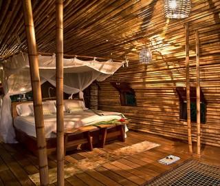 Resort Casa na Árvore Playa Viva - Imagem - 6