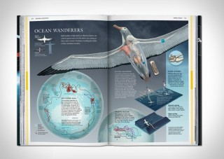 Revista National Geographic Infographics - Imagem - 6
