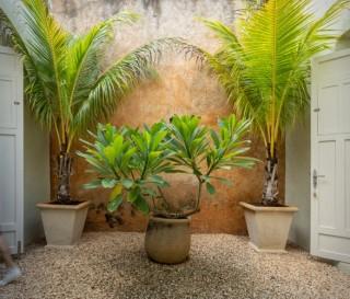 Casa Espetacular no México Ea64 - Imagem - 12