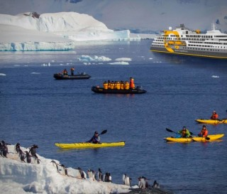 Melhor Experiência em Expedição Polar - QUARK EXPEDITIONS ULTRAMARINE CRUISE SHIP - Imagem - 8
