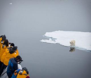 Melhor Experiência em Expedição Polar - QUARK EXPEDITIONS ULTRAMARINE CRUISE SHIP - Imagem - 9